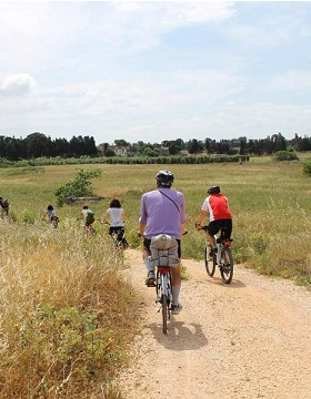 Ciclismo Lento