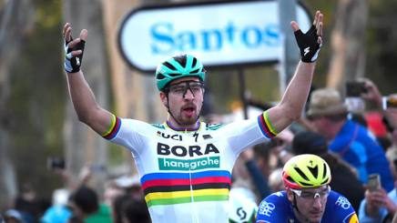 People's Choice: Peter Sagan