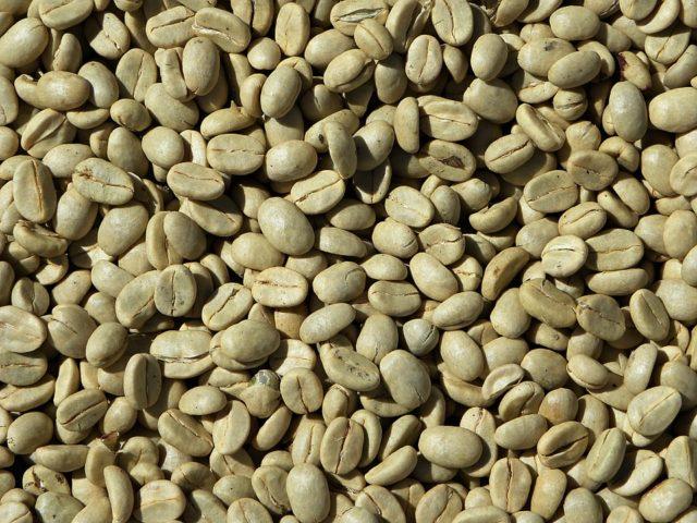 caffè verde (fonte pixabay)